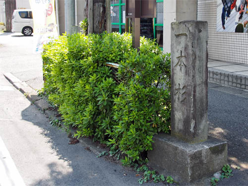 一本杉の碑