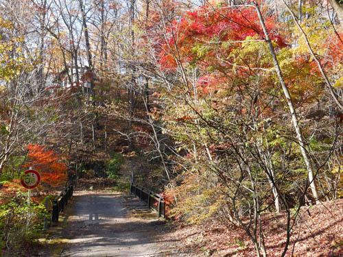 紅葉の別荘地