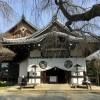 京都 相国寺の伊藤若冲展と養源院の血天井