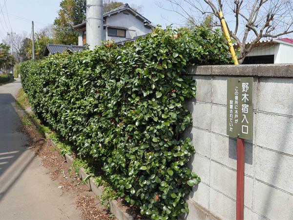 野木宿入口