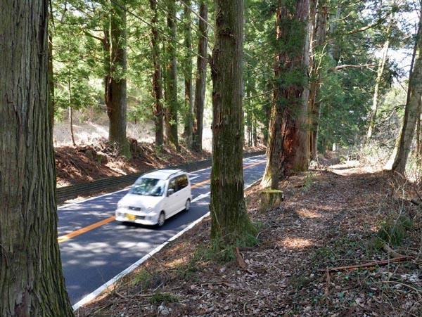 日光街道杉並木