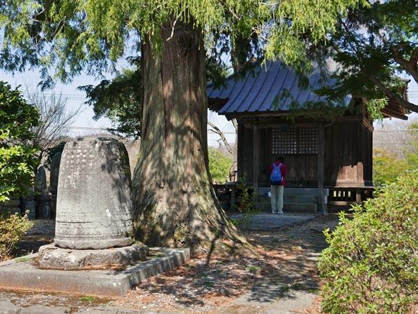 竜蔵寺薬師堂
