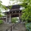 白神山地の旅 Part-3 藤里町の巨木と久保田城